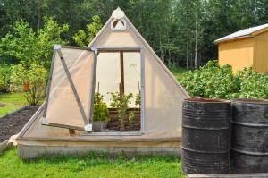 Une mini serre pour un jardin bio